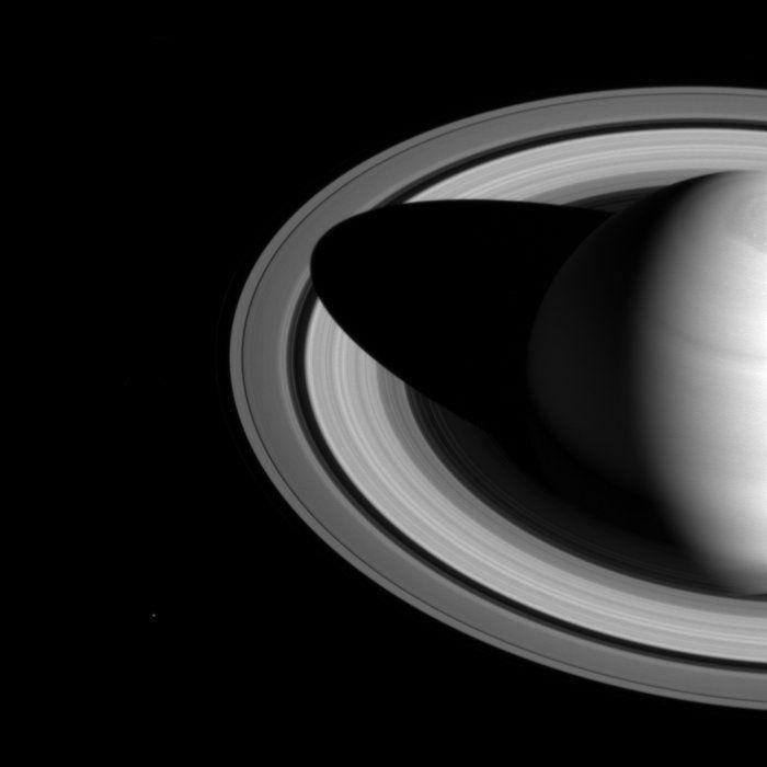 Lluvia de estrellas y una serpiente espacial: imágenes desde el сosmos