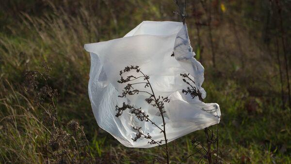 Bolsa de plástico - Sputnik Mundo