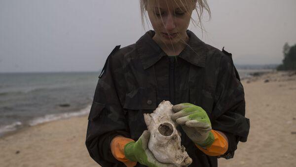 Una voluntaria de la Guardia costera del Baikal durante la recolección de basura en la costa del lago. - Sputnik Mundo