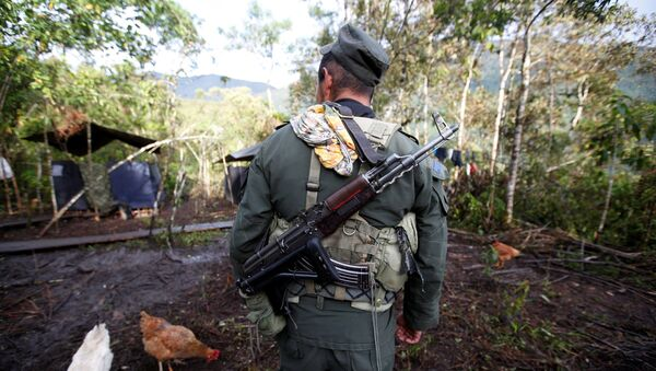 A member of the 51st Front of the Revolutionary Armed Forces of Colombia (FARC) walks at a camp in Cordillera Oriental, Colombia, August 16, 2016 - Sputnik Mundo