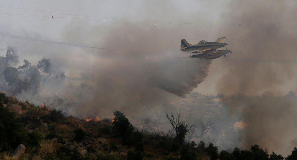 Los incendios forestrales (archivo)