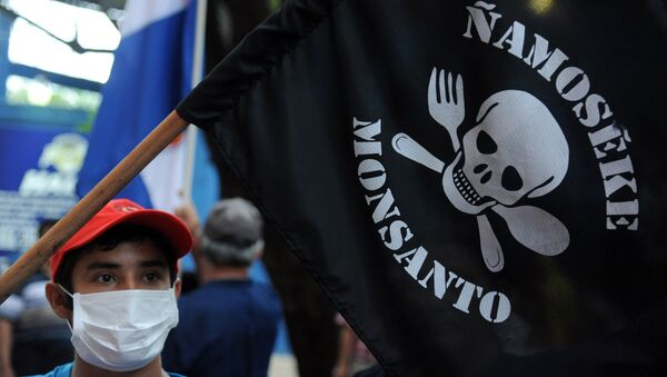 People demonstrate against the US biotechnology giant Monsanto and its genetically modified crops and pesticides, in Asuncion, on May 25, 2015 two days after thousands of people hit the streets in cities across the world to protest against the company. - Sputnik Mundo