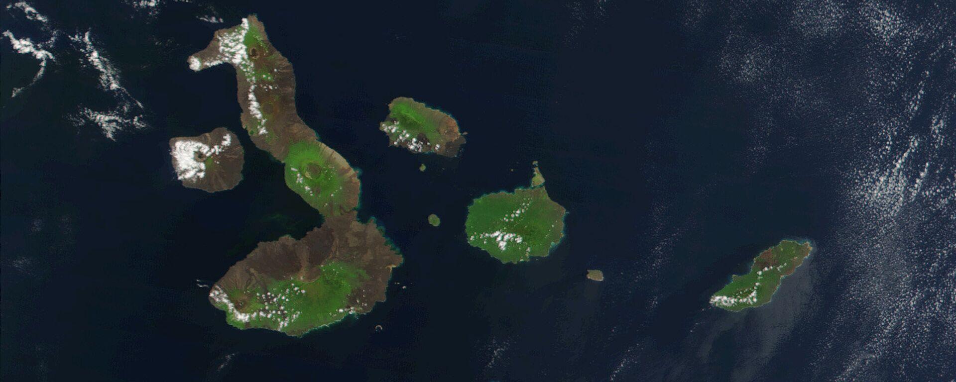 Las Islas Galápagos - Sputnik Mundo, 1920, 05.07.2021