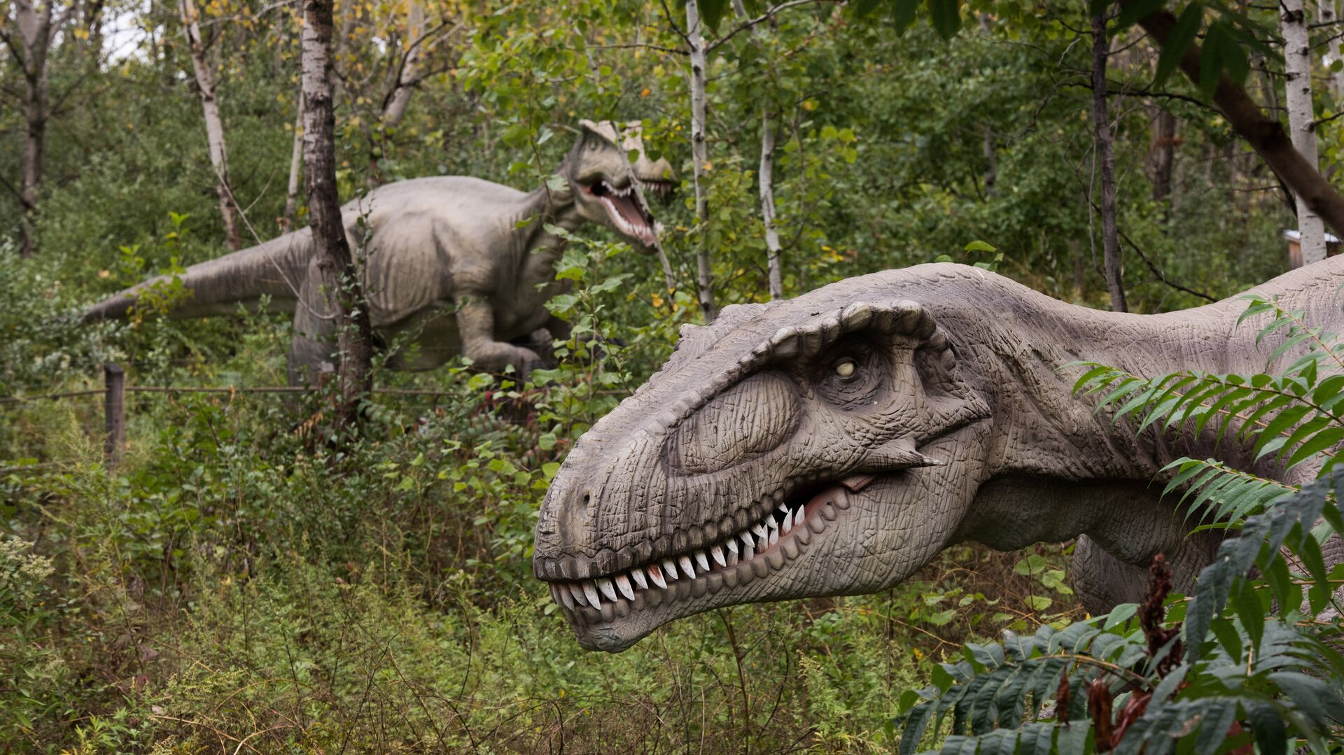 Life-sized animatronic dinosaurs are seen at Field Station: Dinosaurs, a 20-acre outdoor Jurassic learning expedition and family tourist attraction in Secaucus, N.J. on Thursday, Sept. 25, 2014 - Sputnik Mundo, 1920, 02.07.2021