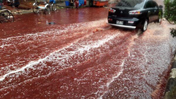 Ríos de sangre inundan las calles de Bangladés - Sputnik Mundo