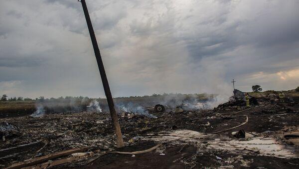 Lugar de caída del avión del vuelo MH17 de Malaysia Airlines - Sputnik Mundo