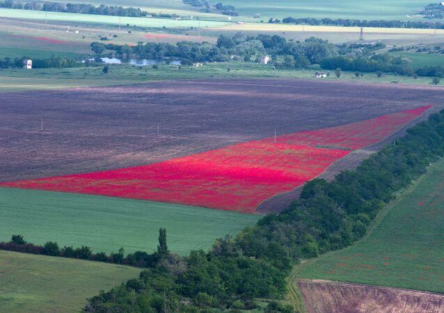 La agricultura de Crimea (imagen referencial)