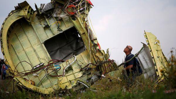 Lugar del siniestro del avión MH17 - Sputnik Mundo