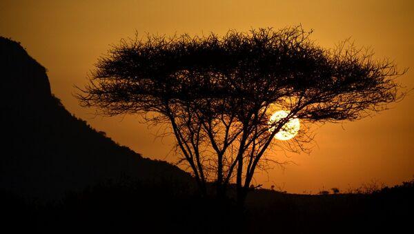 Atardecer en África - Sputnik Mundo