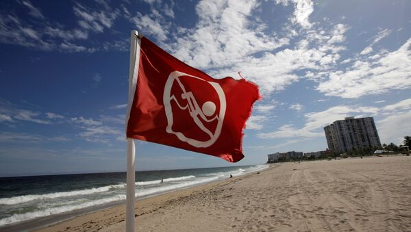 Bandera que prohibe la natación en Florida - Sputnik Mundo
