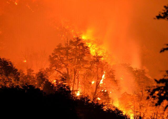 Incendio forestal en Chile (archivo)