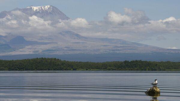 El volcán Shiveluch, situado en la península rusa de Kamchatka - Sputnik Mundo