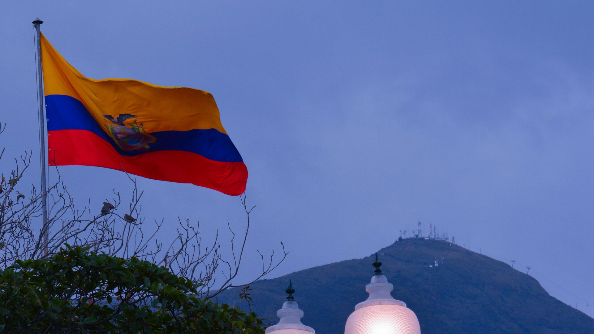 La bandera de Ecuador - Sputnik Mundo, 1920, 17.06.2021
