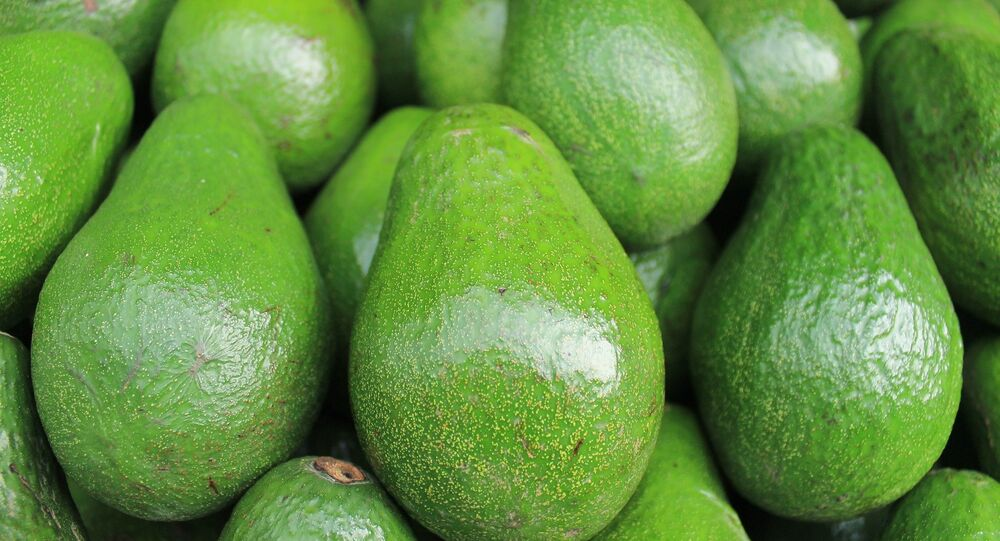 Aguacates (imagen referencial)