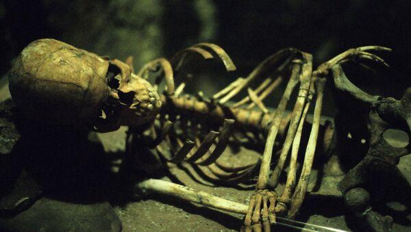 Un esqueleto - Sputnik Mundo