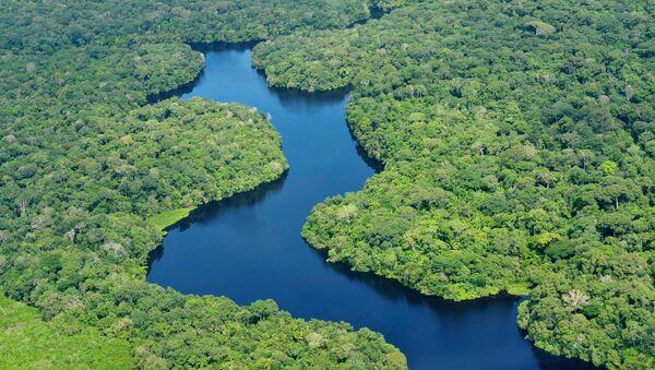 Amazonia (archivo) - Sputnik Mundo