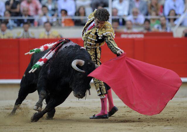 Corrida de toros (Archivo)