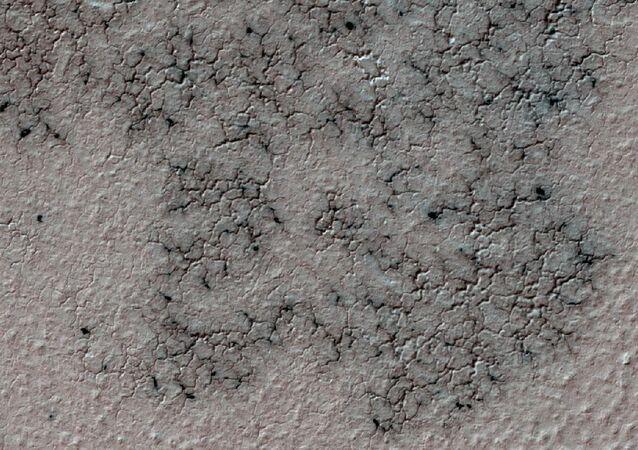 Arañas en Marte