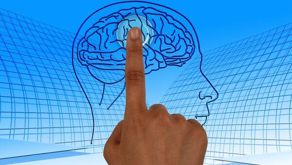 Un cerebro humano - Sputnik Mundo