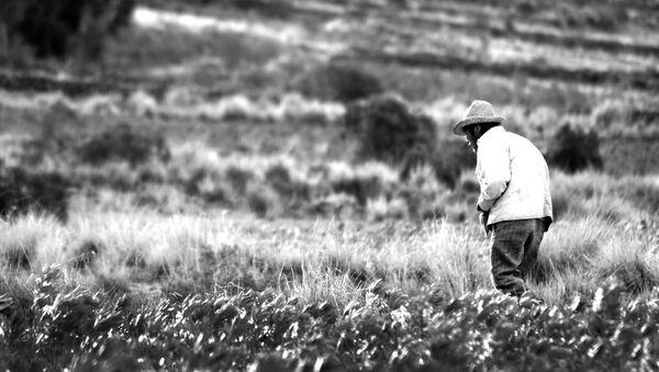 Campesino boliviano - Sputnik Mundo