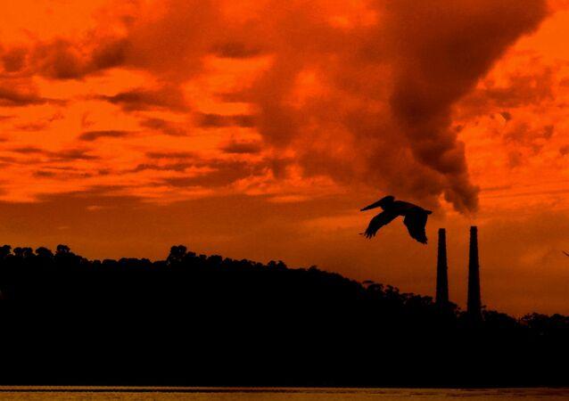 Emisiones de gases contaminantes