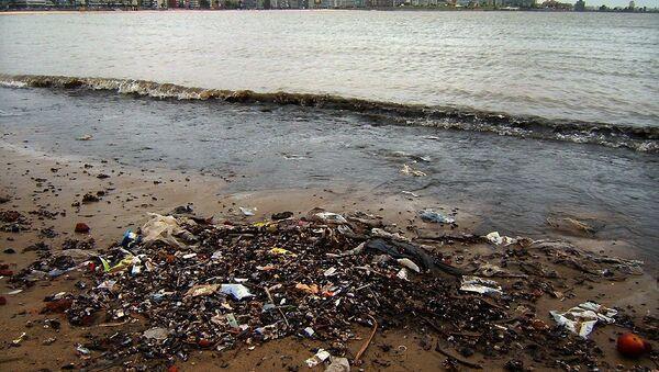 Basura en una orilla en Montevideo - Sputnik Mundo