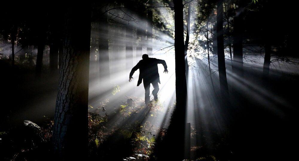 Un hombre en el bosque