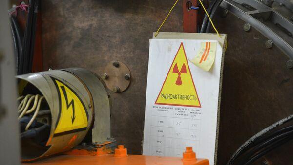 El Centro Nacional de Investigaciones nucleares de Rusia, Instituto Kurchatov - Sputnik Mundo