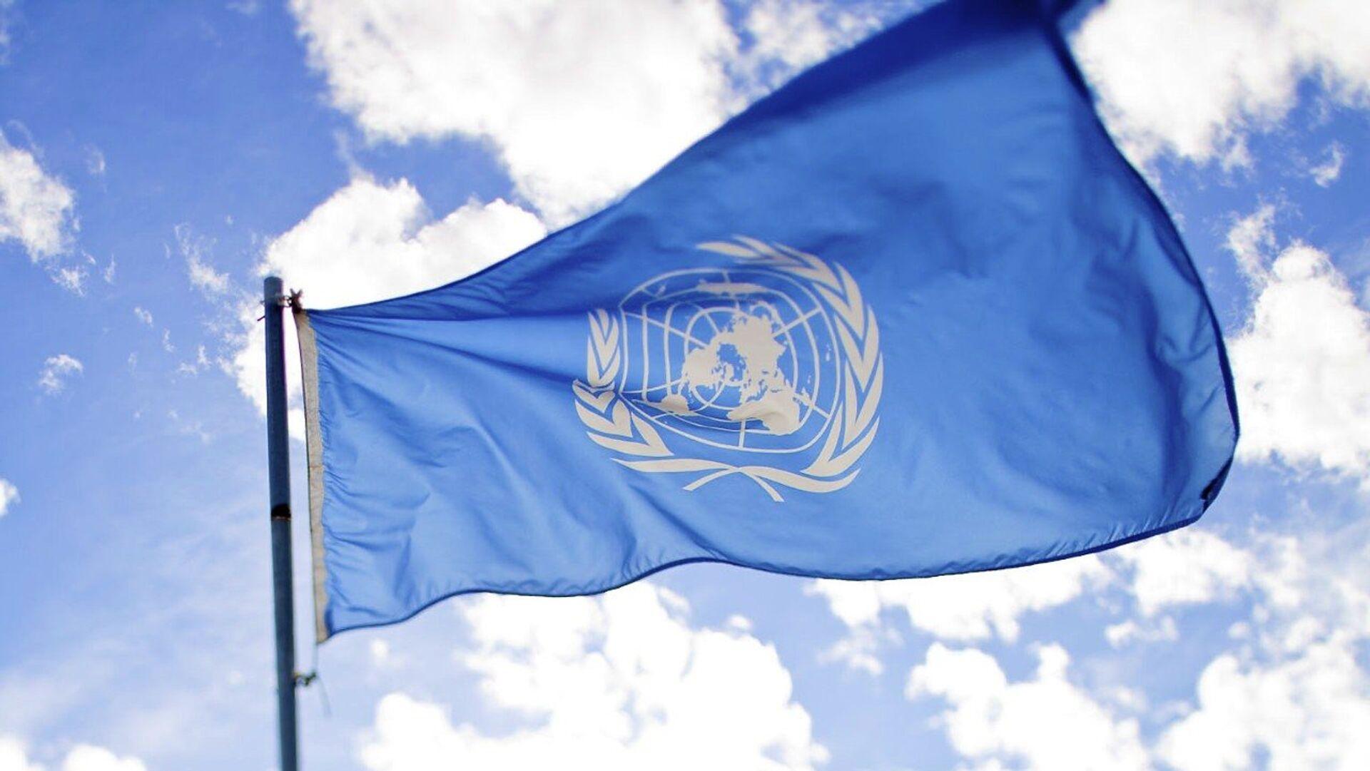 La bandera de la ONU - Sputnik Mundo, 1920, 26.02.2021