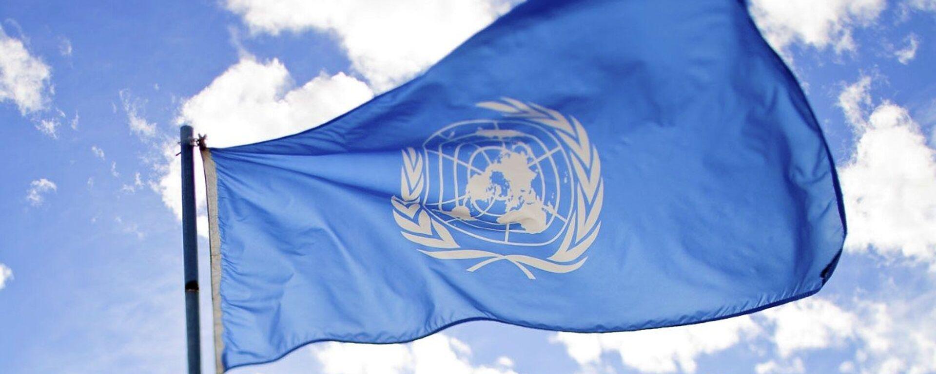 La bandera de la ONU - Sputnik Mundo, 1920, 28.05.2021