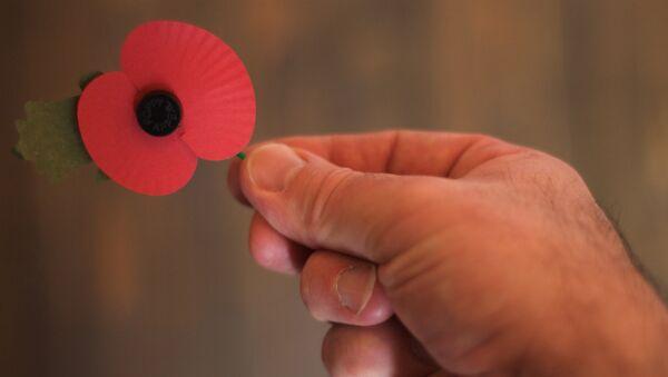 Amapola roja, símbolo de conmemoración de las víctimas de la Primera Guerra Mundial - Sputnik Mundo