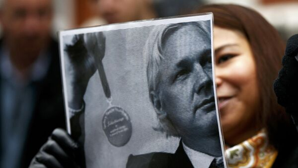 A supporter of Julian Assange holds a poster after prosecutor Ingrid Isgren from Sweden arrived at Ecuador's embassy to interview him in London - Sputnik Mundo