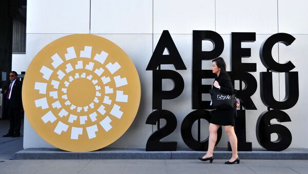 Foro de Cooperación Económica Asia-Pacífico - Sputnik Mundo