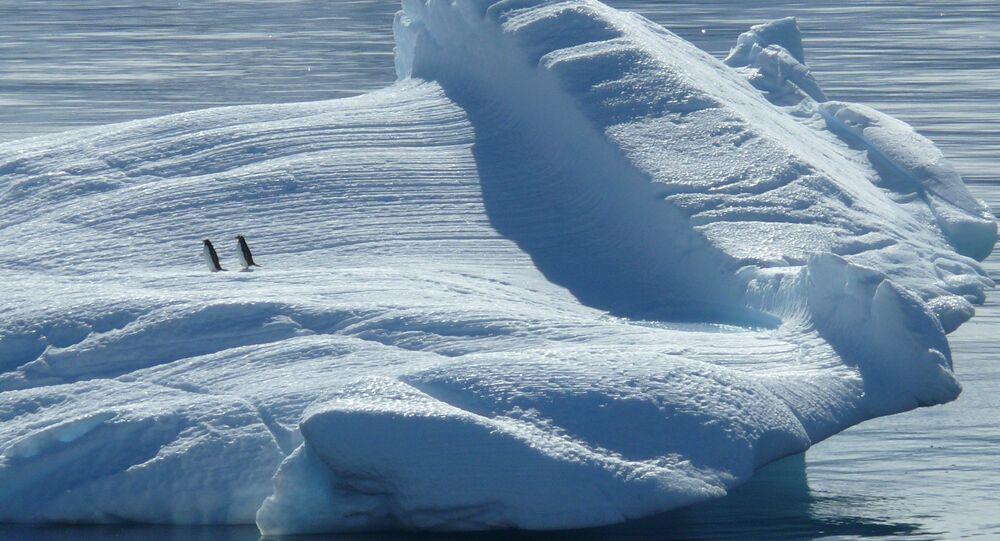 Polo Sur (archivo)