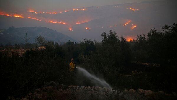 Los incendios en Israel - Sputnik Mundo
