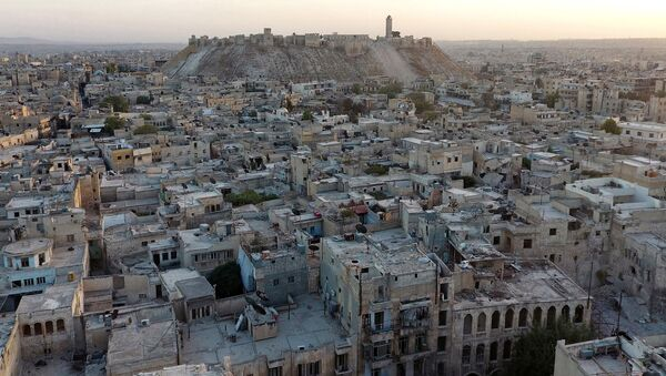 A file photo shows general view taken with a drone showing Aleppo's historic citadel, controlled by forces loyal to Syria's President Bashar al-Assad, as seen from a rebel-held area of Aleppo - Sputnik Mundo