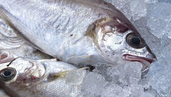 Pescado congelado - Sputnik Mundo