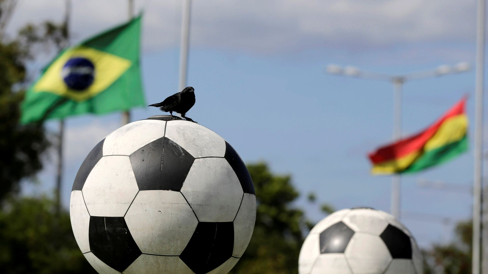 A bird sits on a ball in front of flags of Brazil and member countries of the South American Soccer Confederation (CONMEBOL) at half staff, paying tribute to members of Chapecoense soccer team in a plane crash in Colombia, in front of the headquarters in Luque, Paraguay - Sputnik Mundo, 1920, 12.06.2021