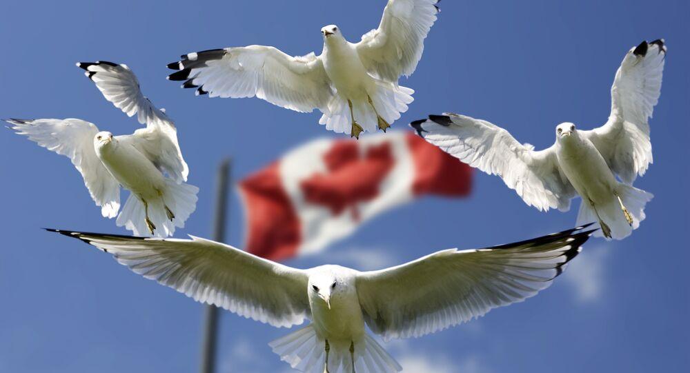 La bandera de Canadá