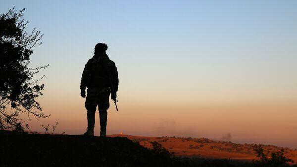 A rebel fighter stands with his weapon in Jubata al-Khashab, Quneitra province, Syria November 26, 2016. REUTERS/Alaa Al-Faqir - Sputnik Mundo