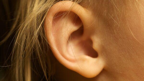 Una oreja (imagen referencial) - Sputnik Mundo
