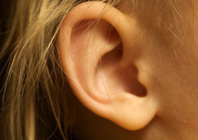 Una oreja (imagen referencial)