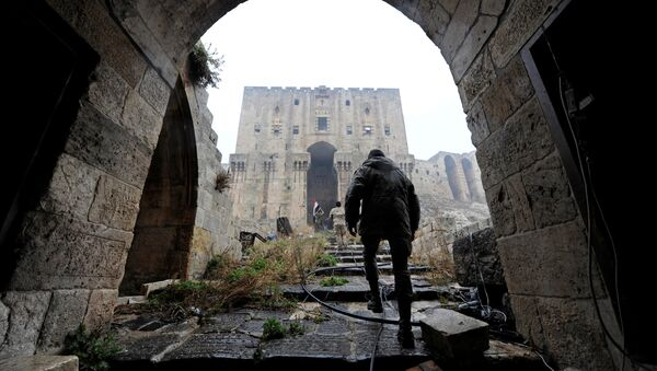 Situación en Siria (archivo) - Sputnik Mundo