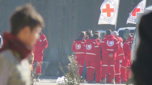 Los representantes de la Cruz Roja en Alepo - Sputnik Mundo