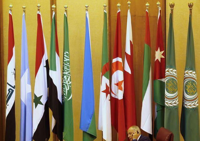 Banderas de los países de la Liga Árabe en El Cairo (archivo)