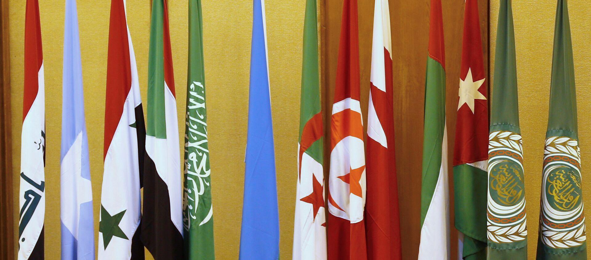 Banderas de los países de la Liga Árabe en El Cairo - Sputnik Mundo, 1920, 03.11.2020