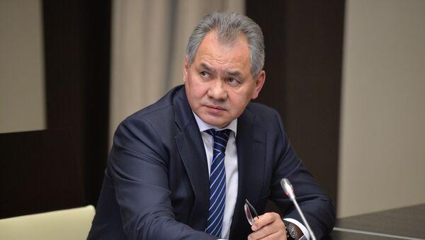 Russian Defense Minister Sergei Shoigu - Sputnik Mundo