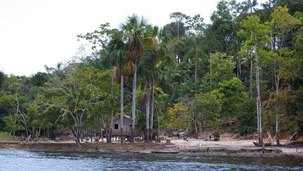 Amazon River - Sputnik Mundo