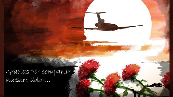 Luto en Rusia tras la tragedia del Tu-154 - Sputnik Mundo