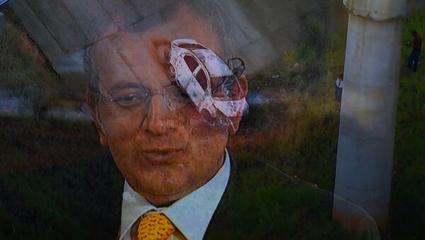 Kyriakos Amiridis, embajador de Grecia en Brasil - Sputnik Mundo